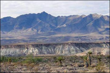 Arrow Canyon Wilderness Area