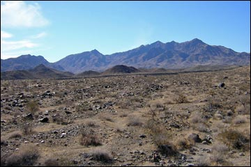 Nellis Wash Wilderness Area